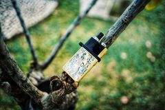 """New Vape pod system for quitting smoking habit alternative on small tree branches. POD or """"ultra-portable systems"""" are essentially the middle-ground royalty free stock photography"""