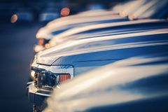 New Vehicles in Dealer Stock Royalty Free Stock Photos
