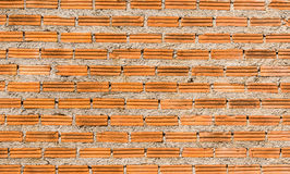 The new wall red bricks. From construction Royalty Free Stock Photography