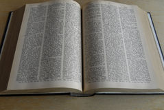 THE NEW WEBSTER ENCYCLOPEDIC DICTIONARY Royalty Free Stock Image