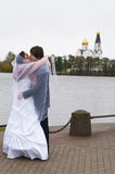 New wedding couple are kissing royalty free stock images