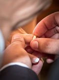 New wedding rings on her finger. Groom putting wedding ring on bride finger Royalty Free Stock Images