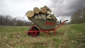 New wheelbarrow on farm field full firewood, time lapse 4K stock video footage
