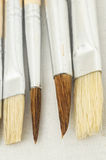 New Wooden Different Paintbrush Texture Royalty Free Stock Photo
