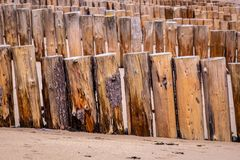 New wooden sea defenses at Dunster beach. A long row of new wooden sea defences along Dunster beach, West Somerset, UK, providing security to the beach houses royalty free stock photography