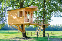 New wooden tree house in oak trees. New wooden tree hut in oak trees with meadow Royalty Free Stock Photos