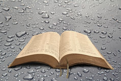 New world open bible. Photo of open bible set against a water droplet background ideal for text etc Stock Photo