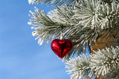New Year. Pine branch with a New Year's ornament against the blue sky Royalty Free Stock Photos