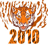 New year 2010 year of the tiger. Illustration of a the new year 2010 year of the tiger Stock Photos