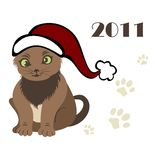 New year 2011 Cat Stock Image
