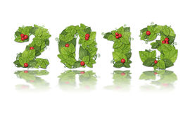 New year 2013. Date lined leaves with red berry. Royalty Free Stock Photo