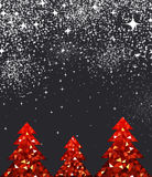 New Year background with Christmas trees. Stock Photography