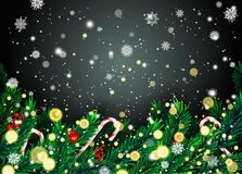New Year background with fir branches and snowflakes Stock Photos