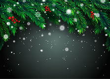 New Year background with fir branches and snowflakes. On black background. Vector illustration Royalty Free Stock Photography