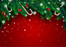 New Year background with fir branches and snowflakes. On red background. Vector illustration Stock Photography