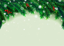 New Year background with fir branches and snowflakes. On white background. Vector illustration Stock Images