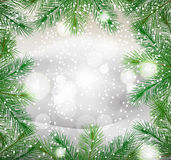 New Year background with green fir branches Royalty Free Stock Photos