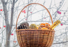New year basket with fruits and champagne at the window Royalty Free Stock Image