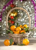 New year basket with Mandarin oranges! stock photography