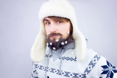 New year beard Stock Photography
