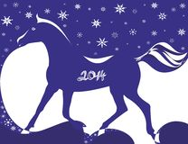 New year of a blue horse 2014 Royalty Free Stock Photos