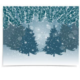 New Year card. Blue, realistic fir branches with snow in the cold winter forest in the background. Christmas. Vector illustration Stock Image