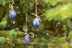 New Year card. Plum hanging on a Christmas tree. royalty free stock photography