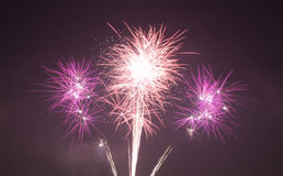 New Year celebration background. Fireworks light up the sky Royalty Free Stock Photography