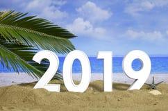 New year 2019 celebration on the beach, summer vacations. 3d illustration. New year 2019 celebration on the beach, summer christmas vacations concept. 3d stock photos