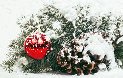 New year celebration, Christmas holiday stuff, tree, toys, decoration with snow isolated, santas red hat. Close up Royalty Free Stock Photography