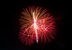New Year celebration fireworks. Royalty Free Stock Photos