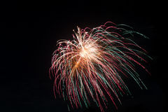 New Year celebration fireworks. Royalty Free Stock Image