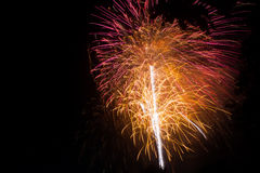 New Year celebration fireworks. Stock Images