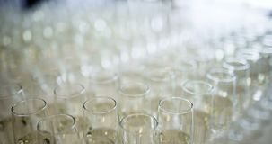 New Year Champagne. Champagne. many champagne Flutes with Sparkling Champagne over new year party Background stock video