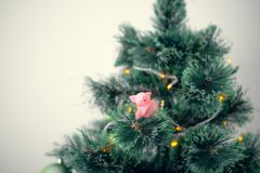 New year Chinese pig tree green pink copy space greeting card calendar concept royalty free stock photos
