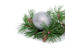 New year, Christmas balls and pine. New year, Christmas balls, pine isolated on white background Stock Images