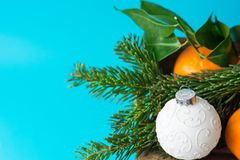 New Year Christmas botanical composition. Fresh fir branches tangerines with green leaves white ornament ball blue backdrop. New Year Christmas botanical royalty free stock photo