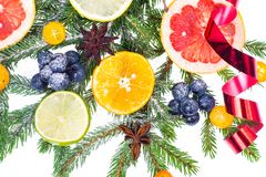 New Year and Christmas branch of spruce, decorated with fruits Stock Images