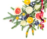New Year and Christmas branch of spruce, decorated with fruits Stock Image