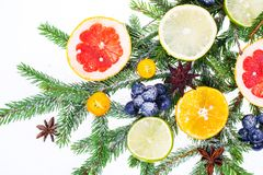 New Year and Christmas branch of spruce, decorated with fruits Royalty Free Stock Photos