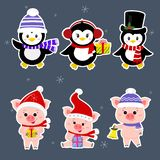 New Year and Christmas card. A set sticker of three piglets and three penguins is typical in different hats and poses in royalty free illustration