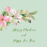 New Year and Christmas Card - Vintage Flowers Poinsettia Royalty Free Stock Images