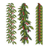New year and Christmas decoration. With holly and spruce tree. Vector illustration Stock Photos