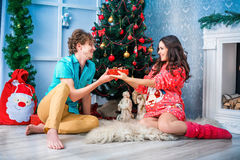 New year and Christmas in the family circle Stock Photo