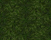 New Year Christmas. Green branch of the Christmas tree. Seamless pattern.  Illustration. New Year Christmas. Green branch of the Christmas tree. Seamless pattern Royalty Free Stock Photography