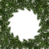 New Year Christmas. Green branch fir in a circle on a white background. Isolated Illustration. New Year Christmas. Green branch fir in a circle on a white Royalty Free Stock Images