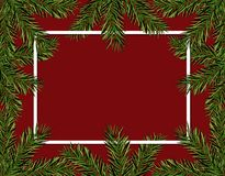 New Year Christmas. Green spruce branches in a circle on a red background. Frame for advertising and ads. Isolated. Vector Illustration Royalty Free Stock Photo