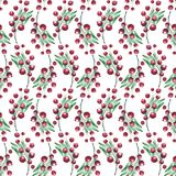 New Year and Christmas Seamless Pattern. Handpainted watercolor seamless pattern with green twigs and many red berries on white background Stock Image