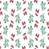 New Year and Christmas Seamless Pattern. Handpainted watercolor seamless pattern with green twigs and red rosehip berries on white background Stock Photography