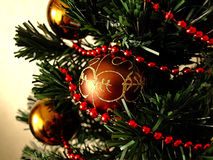 Free New Year Christmas Tree Stock Images - 46062504